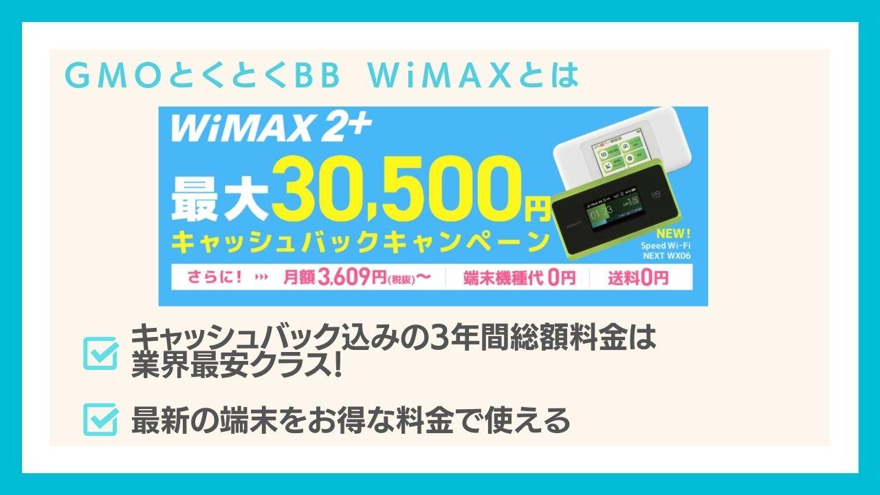 GMOとくとくBB WiMAXは高額キャッシュバックが人気のプロバイダ!